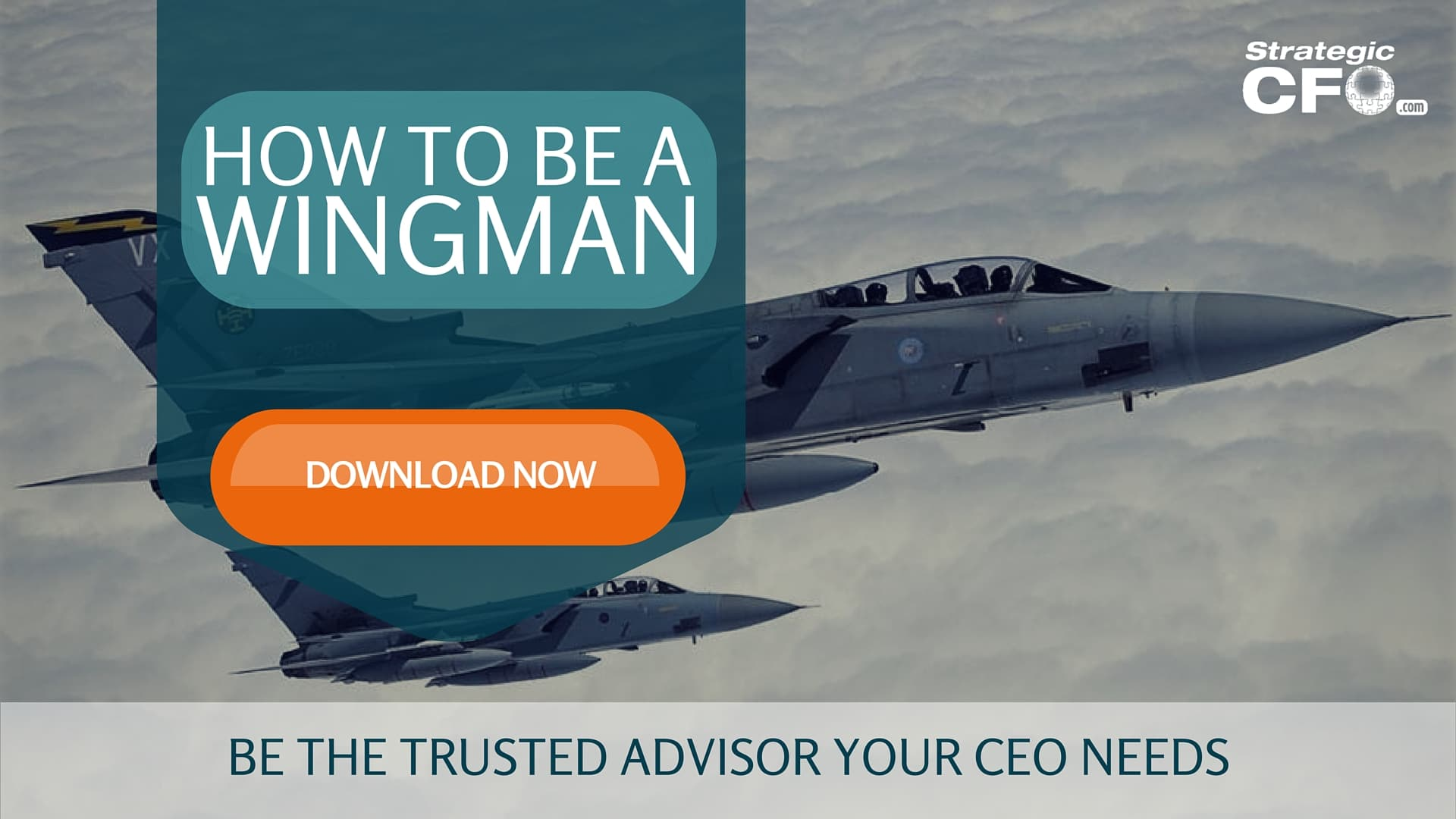 CEOs Want a Wingman