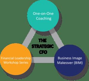 CFO Coaching Page Diagram