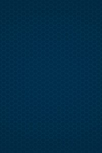 Octagon grid background with vignette